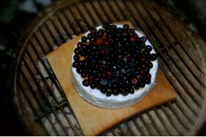 Plank Grilled Blueberry Brie